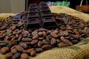 Cacao Marius Nîmes est un chocolatier artisanal (® SAAM D Gontier)
